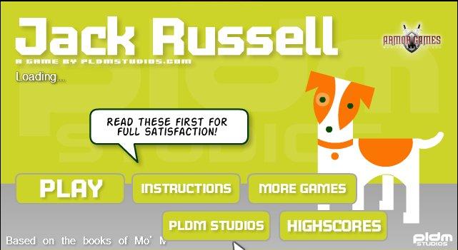 JACK RUSSELL terrier hodowla