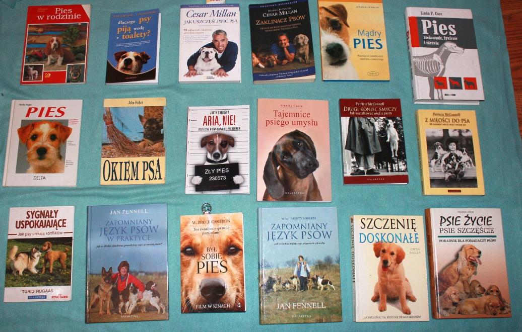 pies z maski, ksiażki o psach